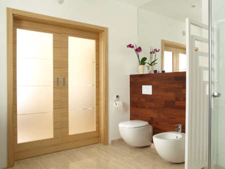 bidet: Luxurious bathroom with toilet and bidet