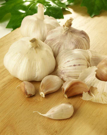 White healthy garlic in peel photo