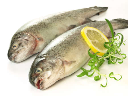 Trouts with herbs and lemon slices on isolated background photo