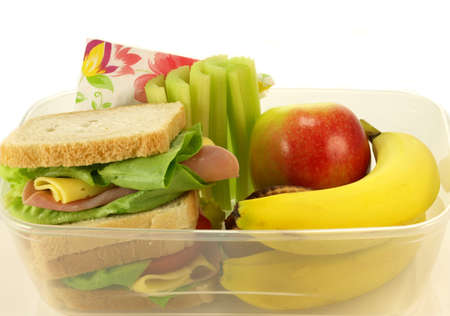 Healthy lunch por one person on isolated background photo