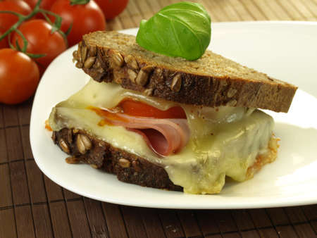 orginal: Homemade cheeseburger with whole grain bread