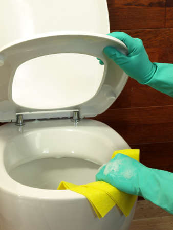 rubber gloves: Household: cleaning a toilet using gloves and rubber Stock Photo