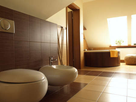 well equipped: Interior of modern bathroom in brown and beige Stock Photo