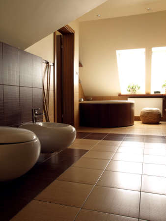 Modern bathroom with toilet and bidet, vertical photo
