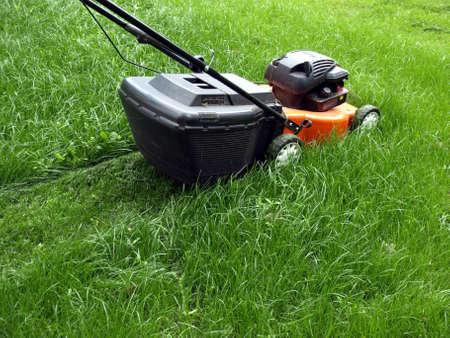 gras maaien: Het maaien van een gazon met een grasmaaier Stockfoto
