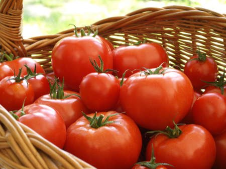 Wicker basket of tomatoes on green grass Stock Photo