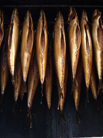 Mackerel hanging in special stove and smoking Stock Photo - 14464342