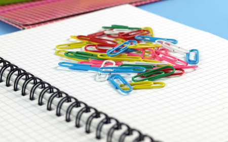 A lot of colorful paperclips on the sheet of paper photo