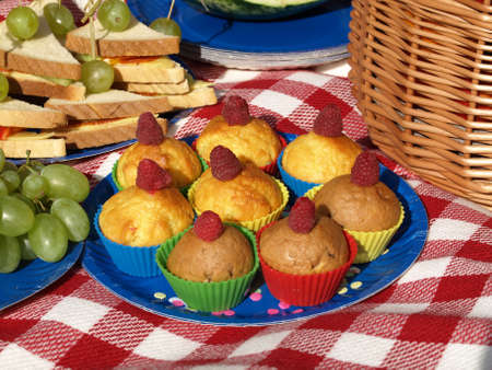 Sweet muffins for perfect summer picnic on checkered blanket photo