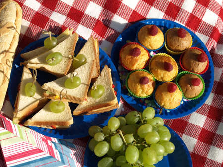 Bird eye view on food  for picnic on paper plates photo