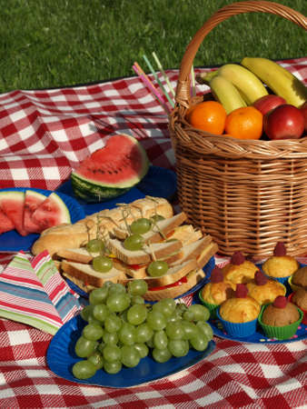 Closeup of fresh grapes and snacks for summer picnic  photo