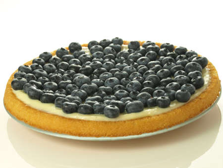Delicious blueberries cake on isolated background,closeup photo
