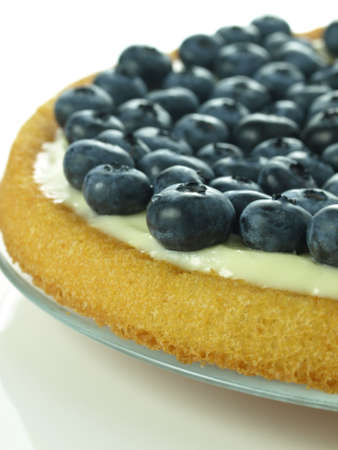 summer pudding: Summer sponge cake with blueberries and pudding