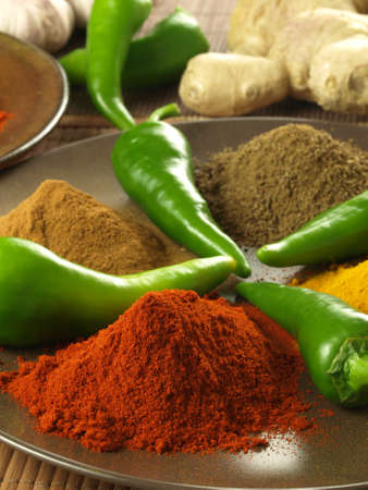 Green chili peppers with indian spices, closeup Stock Photo - 14739685