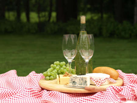 Cheeses and white wine, picnic in garden photo