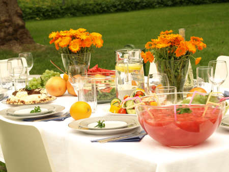 dinner table: Laid table in a garden ready for a party