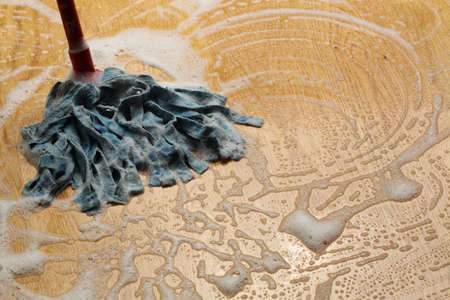 cleaning floor: Mopping wooden floor with special cleaner,foam