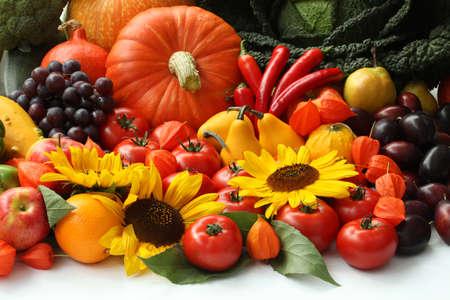 cucurbit: Autumn vegetables, fruits and flowers, close up