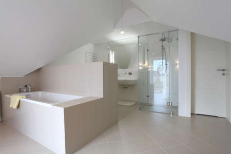 attic: Modern bathroom