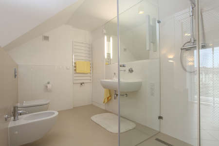 New finished bathroom in modern, contemporary house photo