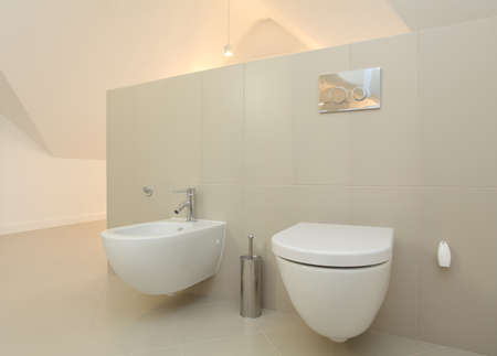 Toilet and bidet in bright modern bathroom photo