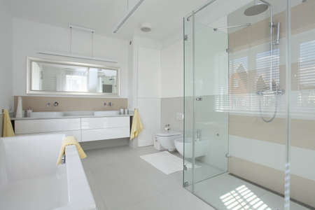 well equipped: New finished bathroom in a modern house Stock Photo