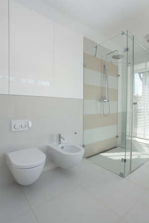 Toilet, bidet and a shower in contemporay bathroom photo