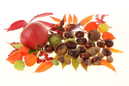 Autumn mixture with apple and different nuts photo