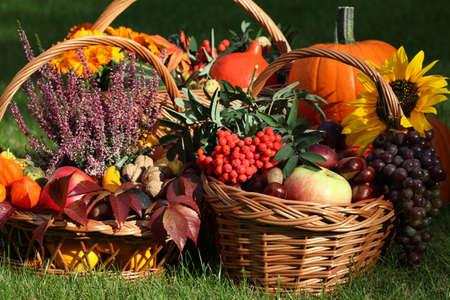 Autumn goodies in wicker baskets on green grass photo