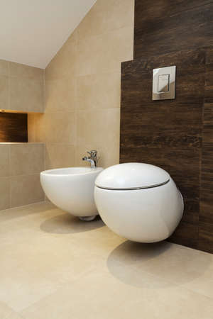 bidet: Toilet and bidet in a contemporary bathroom
