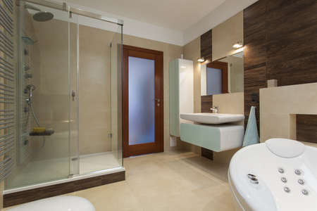 private room: Elegant bathroom interior with bath and shower Stock Photo
