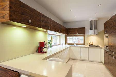 New contemporary kitchen interior in green colors photo