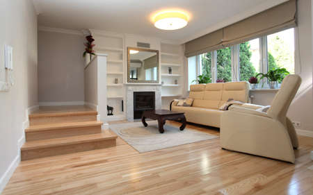 Interior of living room in luxurious house Stock Photo - 16035812