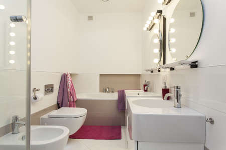 Elegant and modern bathroom with pink additions Stock Photo - 16158758
