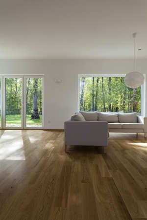 Huge spacious living room with comfortable couch