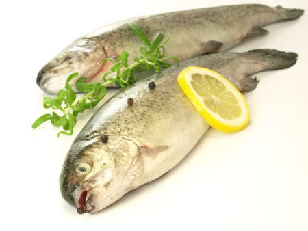 Fresh and healthy fish for dinner on isolated background photo