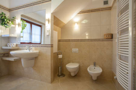Toilet and bidet in a creamy new bathroom Stock Photo - 16643821