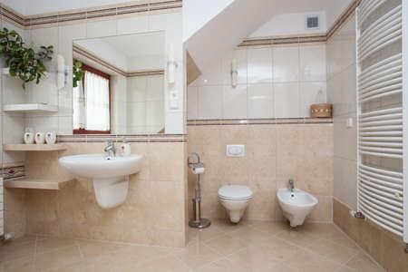 bidet: Big spacious bathroom interior, wc and bidet