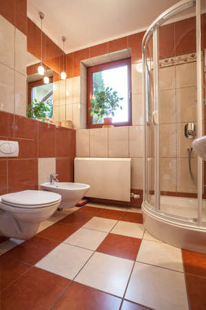 bathroom interior: Toilet, bidet and shower in new bathroom