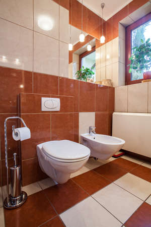 Brown and beige toilet interior: wc and bidet photo