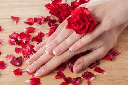 Woman hands  with red petals and flower  photo