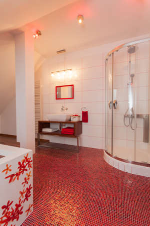 ruby house: Ruby house - Interior of modern bathroom with red floor