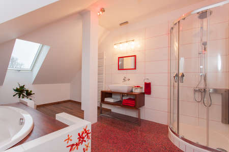 Ruby house - Modern and original bathroom in the attic Stock Photo - 17153218