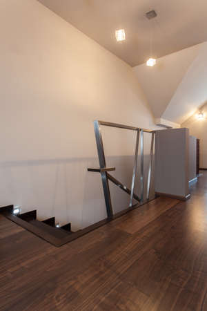 ruby house: Ruby house - Stairs with original metal banister, modern interior Stock Photo