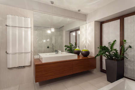 Ruby house - rectangular wash basin on wooden shelf Stock Photo - 17193683