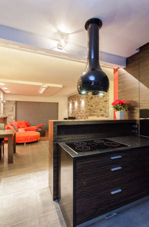 ruby house: Ruby house - cooker in modern kitchen interior