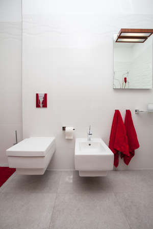 cloudy home: Cloudy home - ceramic bathroom equipment- wc and bidet Stock Photo