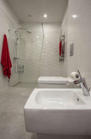 Cloudy home - bathroom interior with white ceramic toilet and bidet photo