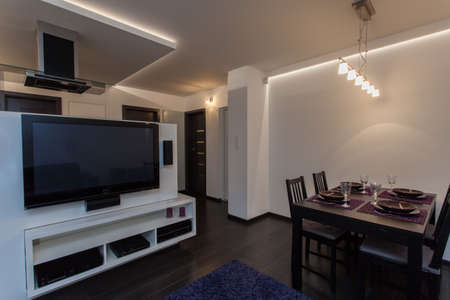 home cinema: Minimalist apartment - living room connected with dining room