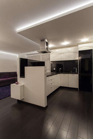 Minimalist apartment - black and white modern kitchen photo
